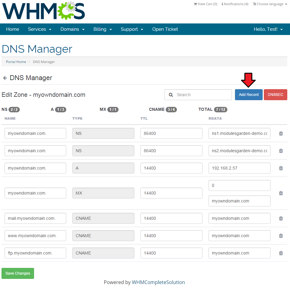 dns manager 5